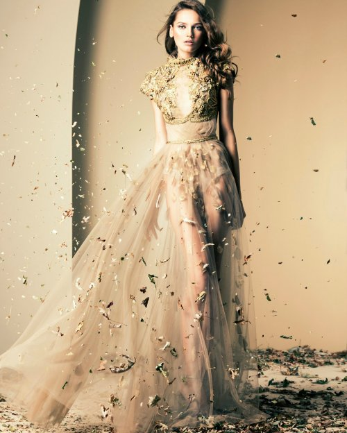 Ziad nakad nude gold prom dress 2015